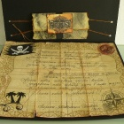 пираты2